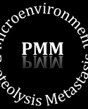 View profile for PMM Lab