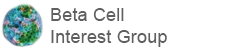 Beta Cell Interest Group (BIG)