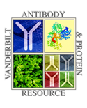 View profile for The Vanderbilt Antibody and Protein Resource